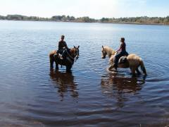 Lakeside stables for Lake istokpoga fishing